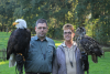 Valkenhof Roofvogel Demonstraties