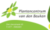 Beuken vd Plantencentrum