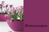 Bloemencentrum Hoondert
